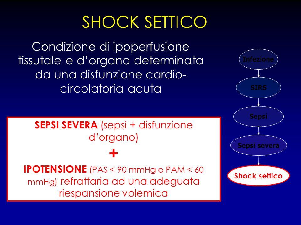 SEPSI SEVERA (sepsi + disfunzione d'organo)