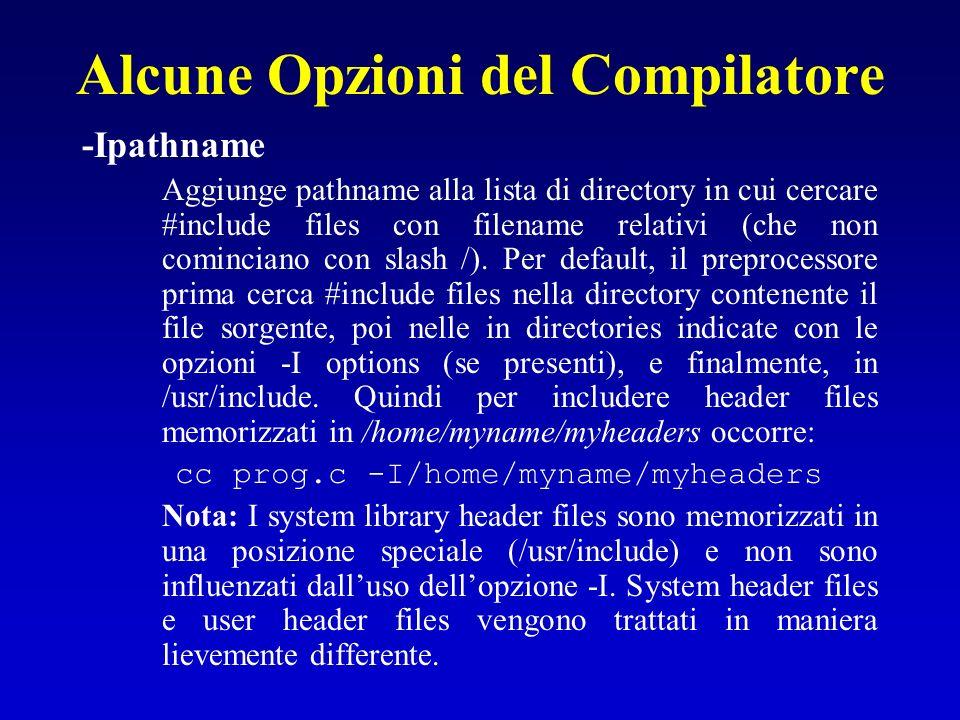 Alcune Opzioni del Compilatore