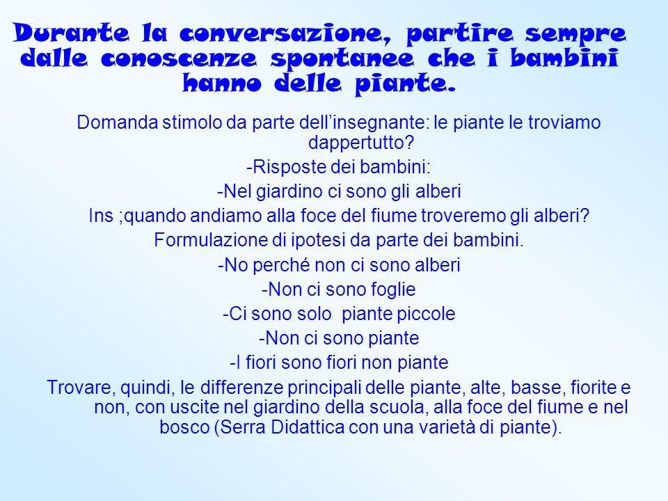 Durante la conversazione, partire sempre dalle conoscenze spontanee che i bambini hanno delle piante.