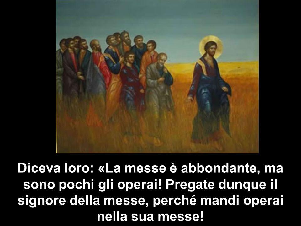 Diceva loro: «La messe è abbondante, ma sono pochi gli operai