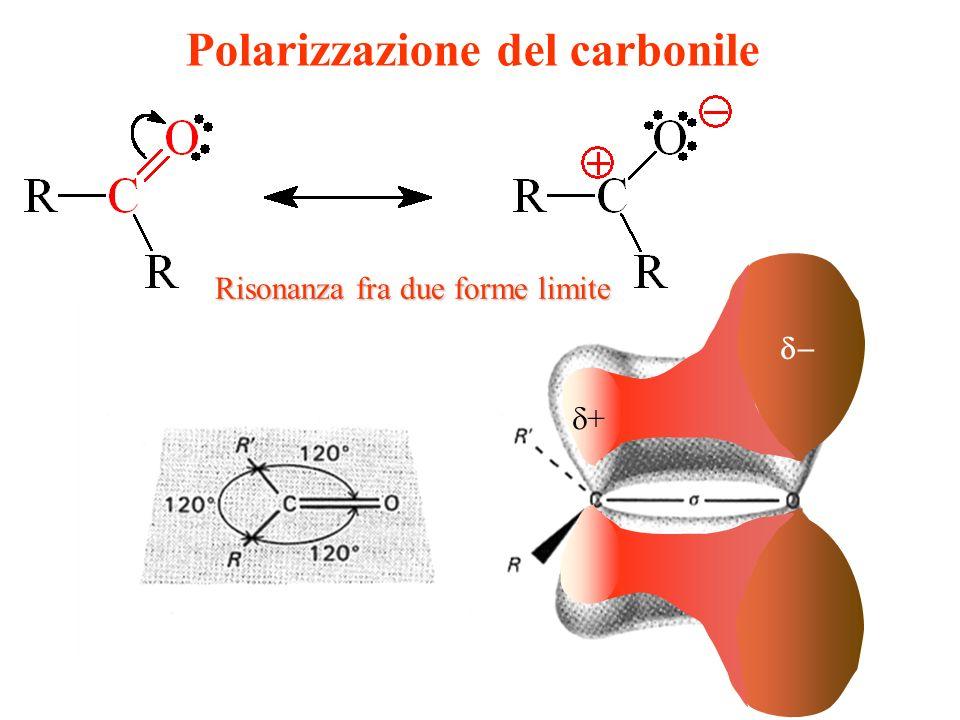 Polarizzazione del carbonile