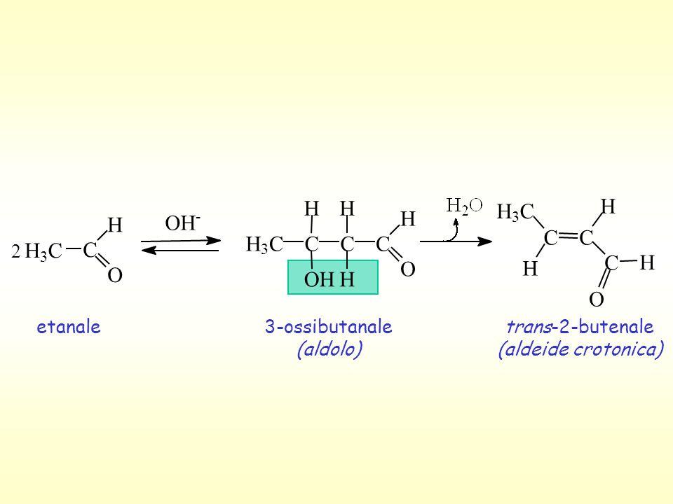 H H H C O H H O H H C C C C H C C O O O H H 2 etanale 3-ossibutanale