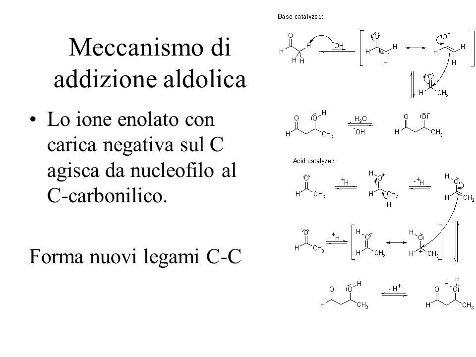 Meccanismo di addizione aldolica