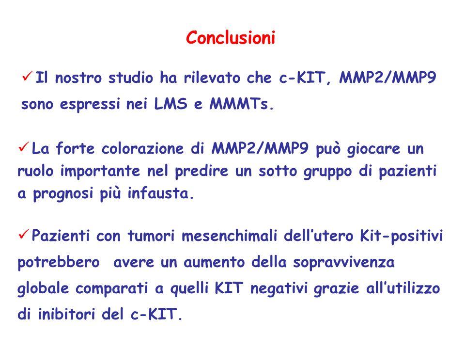 Conclusioni Il nostro studio ha rilevato che c-KIT, MMP2/MMP9