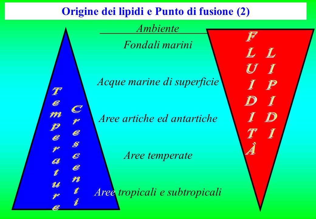 Origine dei lipidi e Punto di fusione (2)