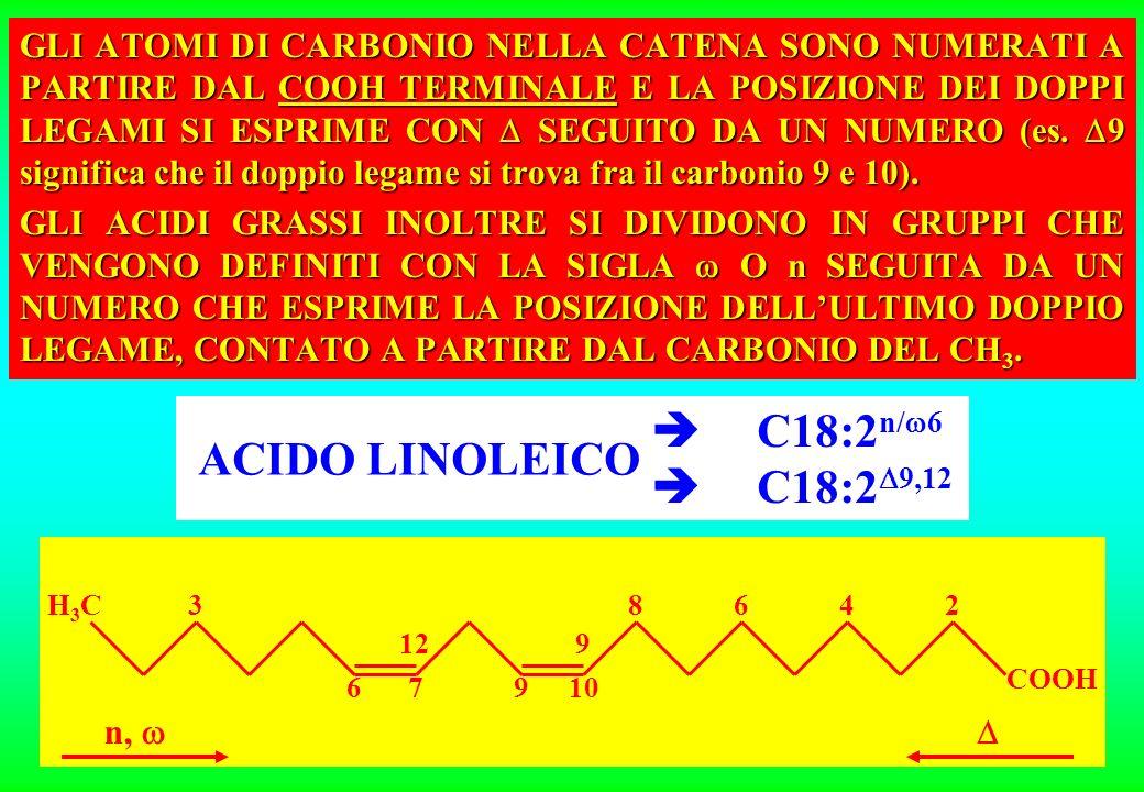  C18:2n/6  C18:29,12 ACIDO LINOLEICO