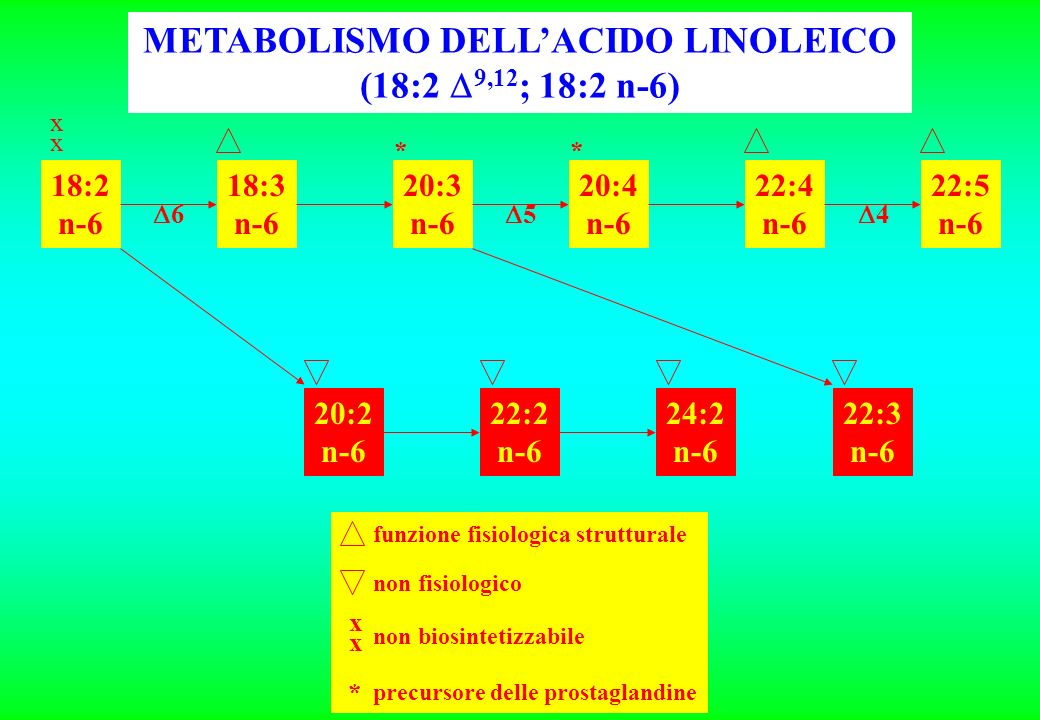 METABOLISMO DELL'ACIDO LINOLEICO