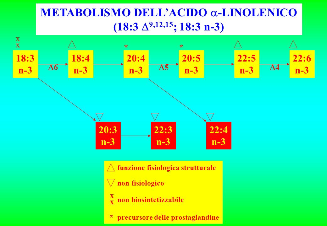 METABOLISMO DELL'ACIDO -LINOLENICO