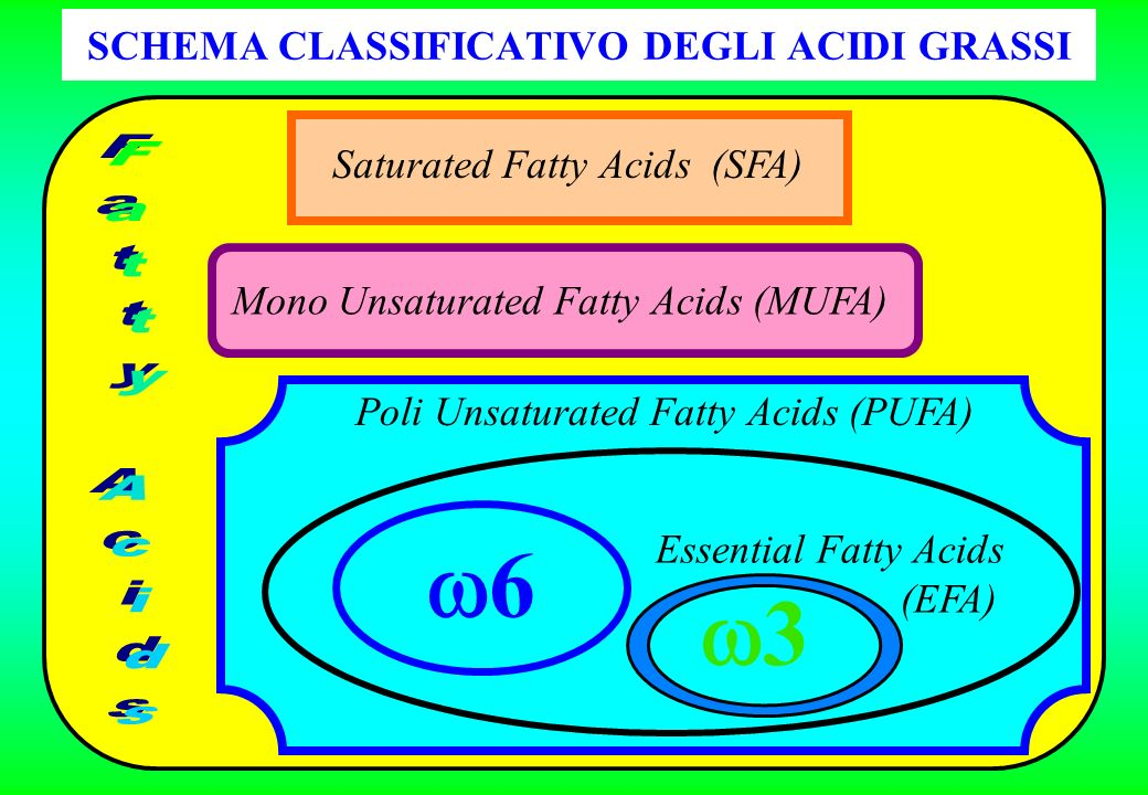SCHEMA CLASSIFICATIVO DEGLI ACIDI GRASSI