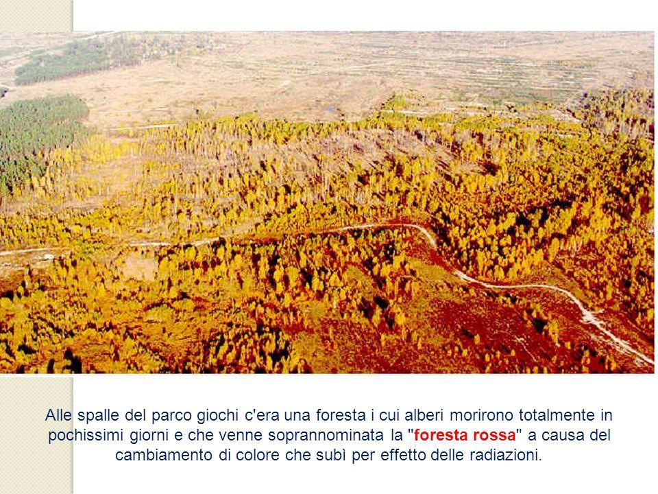 Alle spalle del parco giochi c era una foresta i cui alberi morirono totalmente in pochissimi giorni e che venne soprannominata la foresta rossa a causa del cambiamento di colore che subì per effetto delle radiazioni.