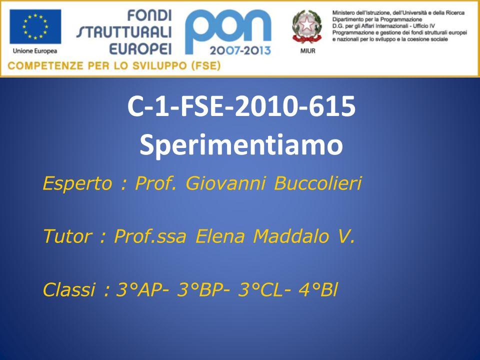 C-1-FSE-2010-615 Sperimentiamo