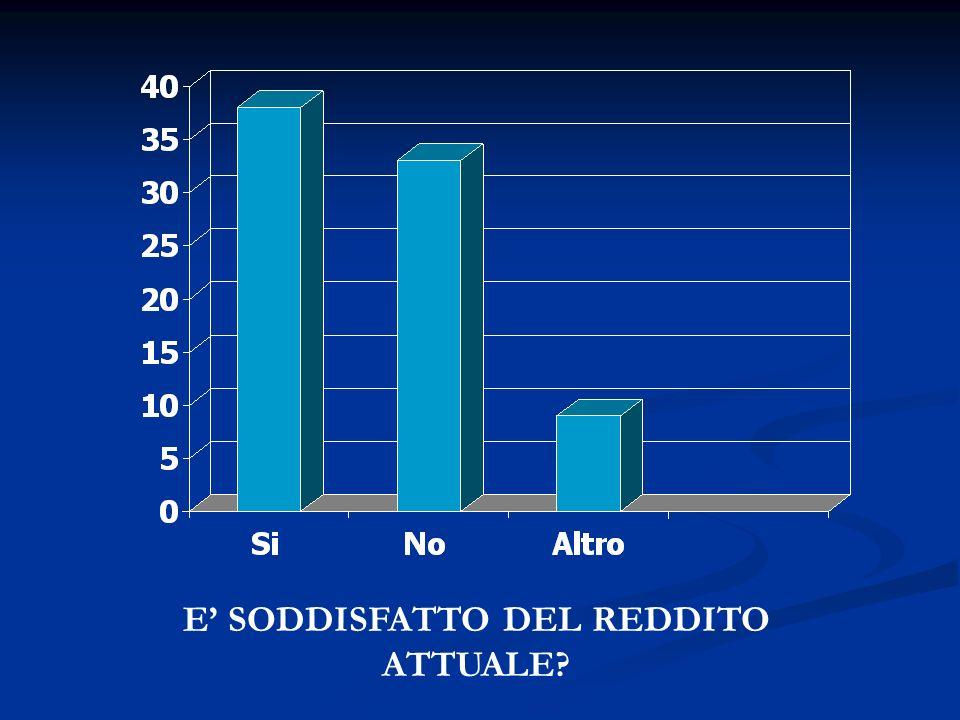 E' SODDISFATTO DEL REDDITO ATTUALE