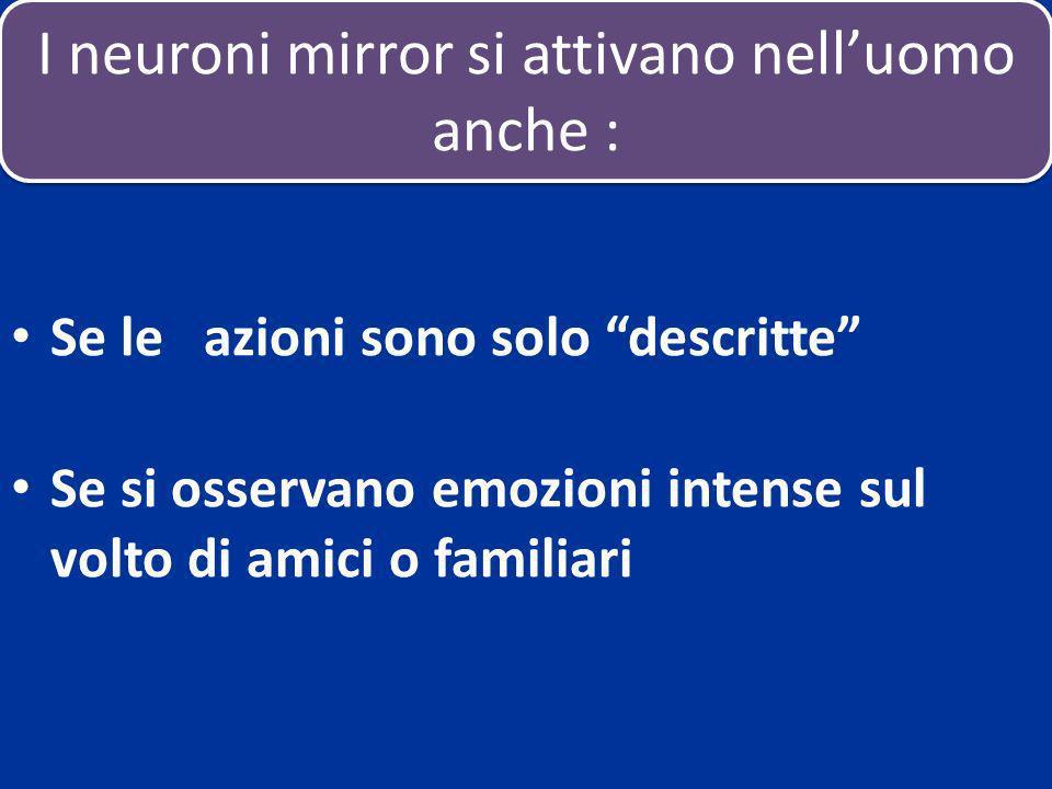 I neuroni mirror si attivano nell'uomo anche :