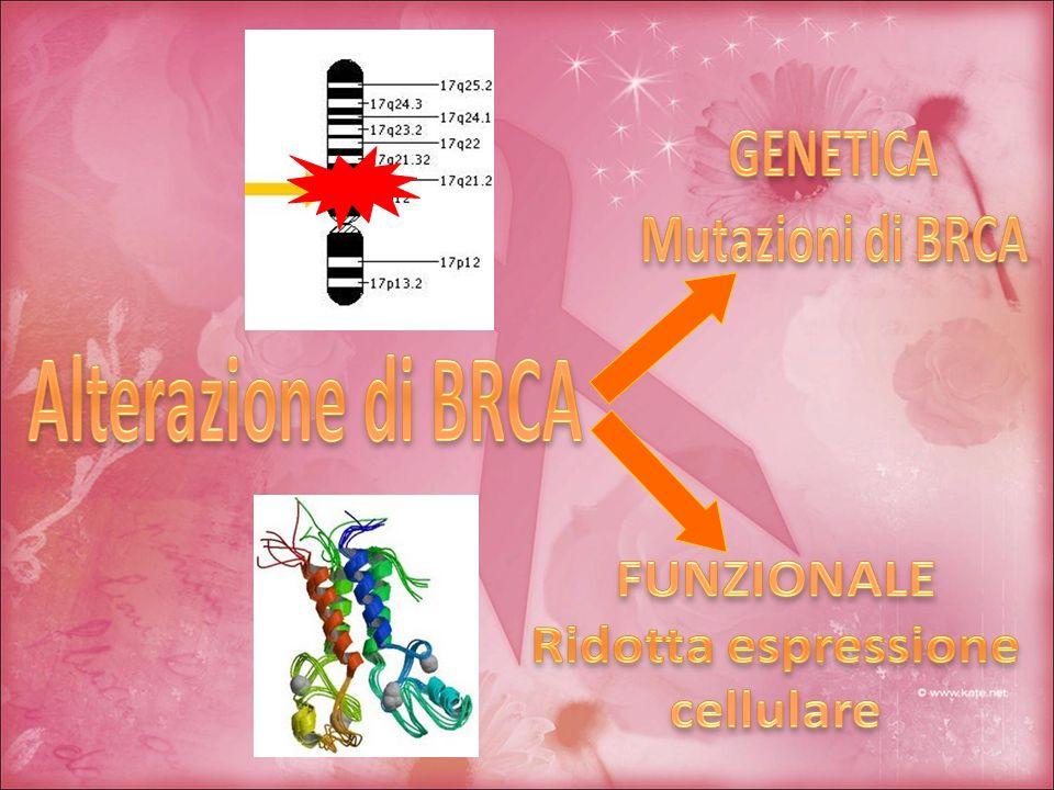 Alterazione di BRCA GENETICA Mutazioni di BRCA FUNZIONALE