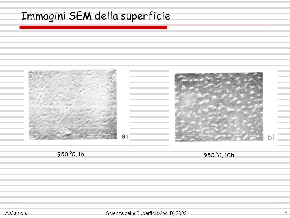 Immagini SEM della superficie