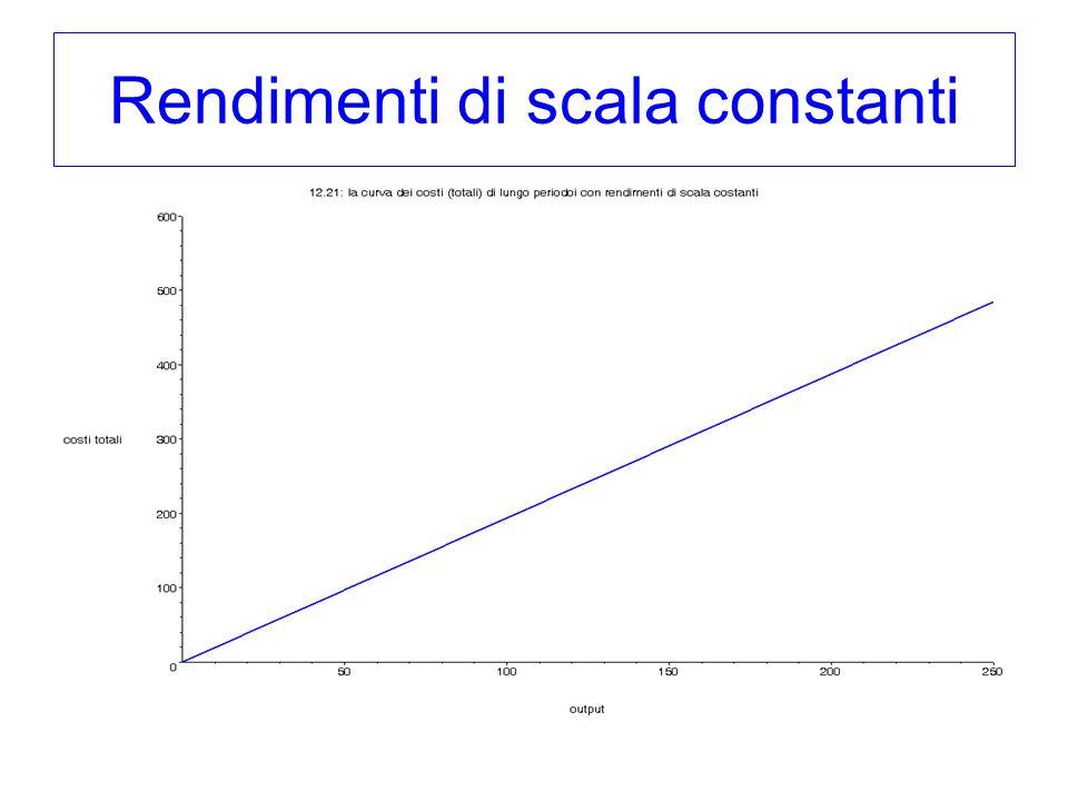 Rendimenti di scala constanti