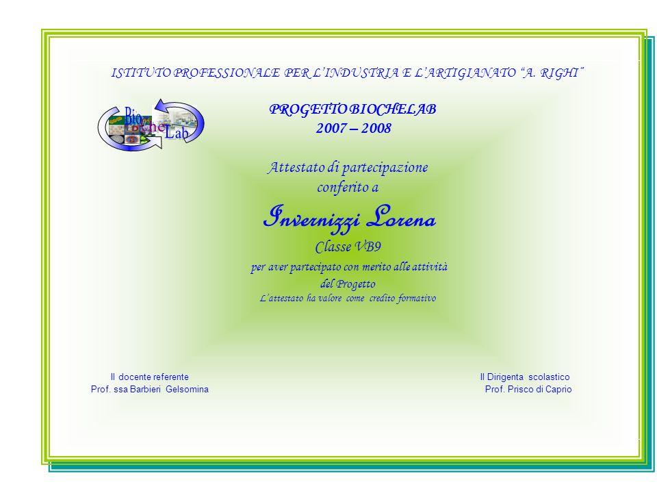 B C L io he ab PROGETTO BIOCHELAB 2007 – 2008