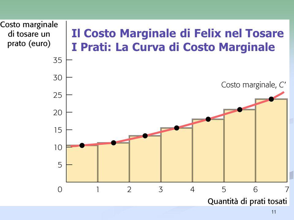 Il Costo Marginale di Felix nel Tosare I Prati: La Curva di Costo Marginale