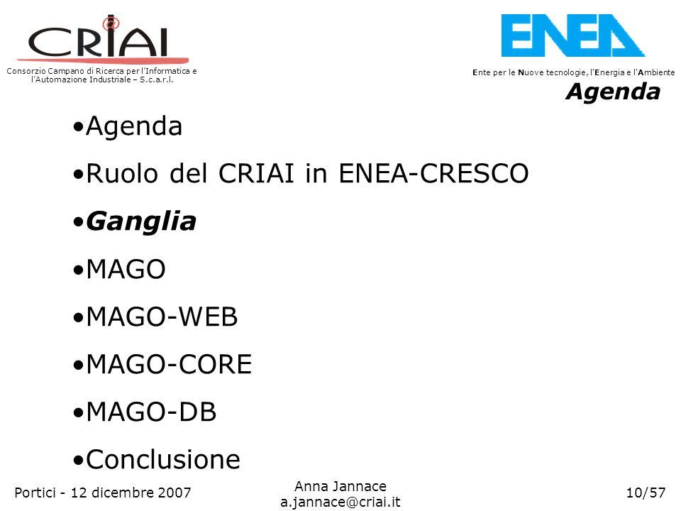 Ruolo del CRIAI in ENEA-CRESCO Ganglia MAGO MAGO-WEB MAGO-CORE MAGO-DB