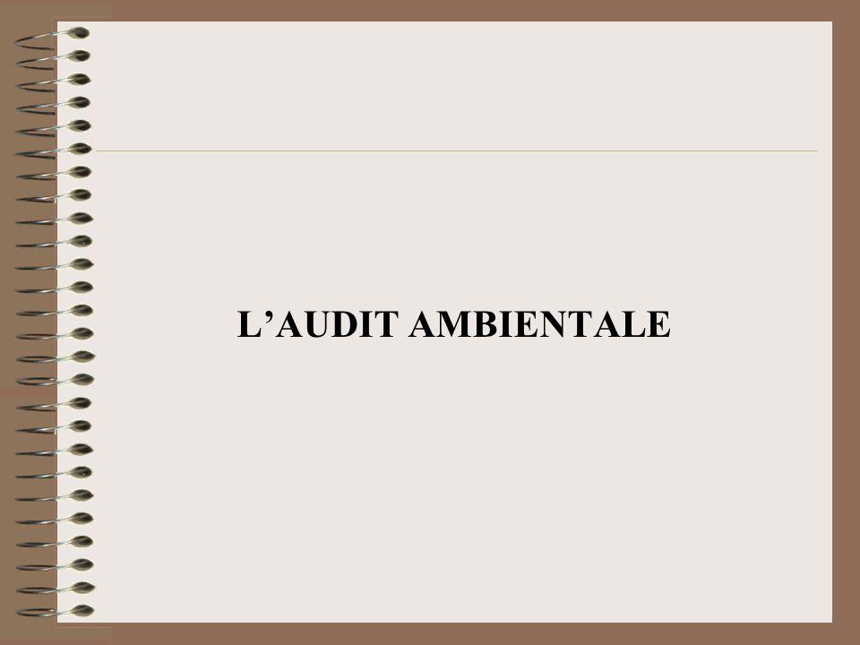 L'AUDIT AMBIENTALE
