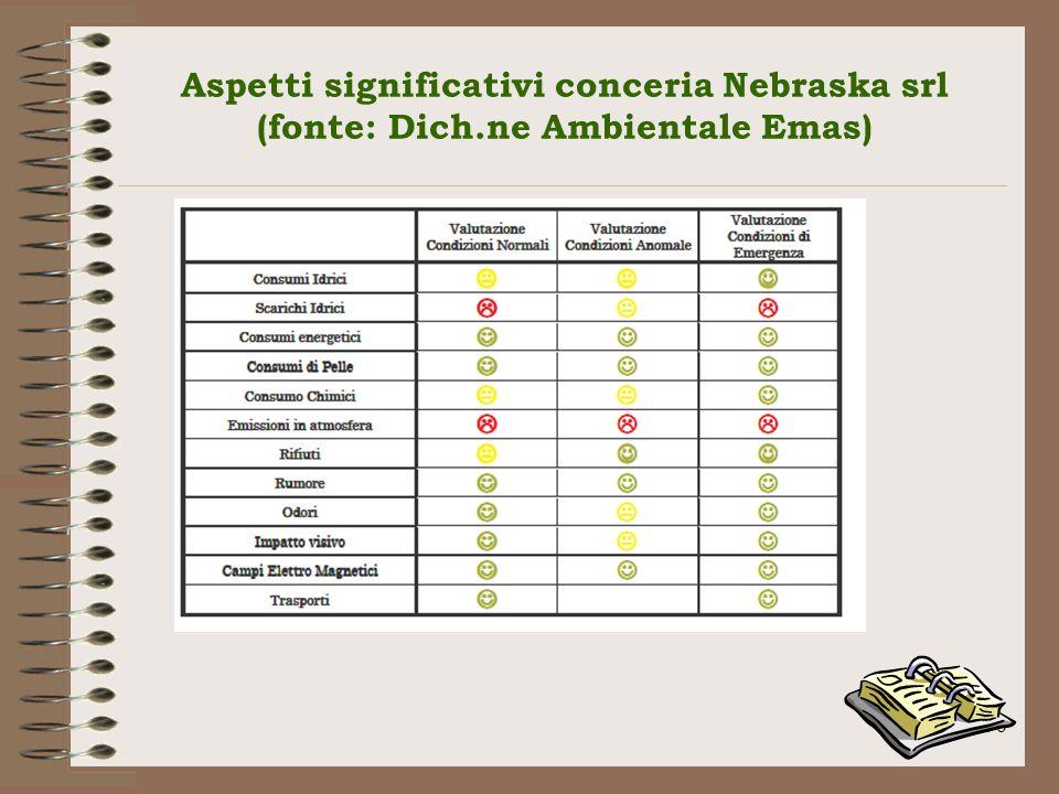 Aspetti significativi conceria Nebraska srl (fonte: Dich