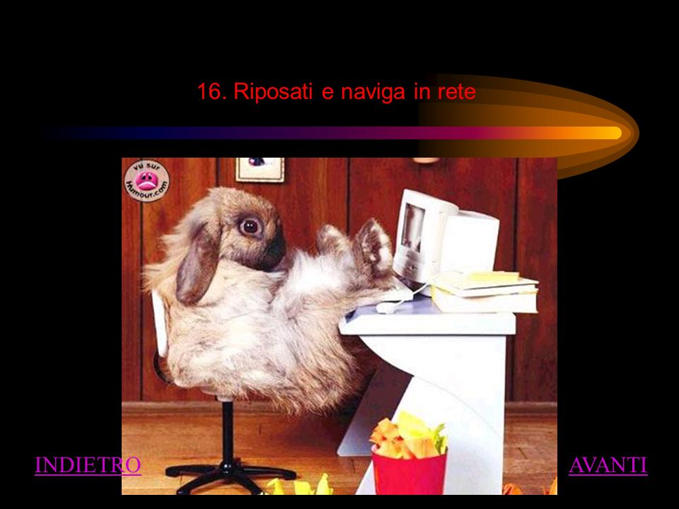16. Riposati e naviga in rete