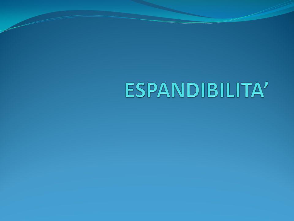 ESPANDIBILITA'