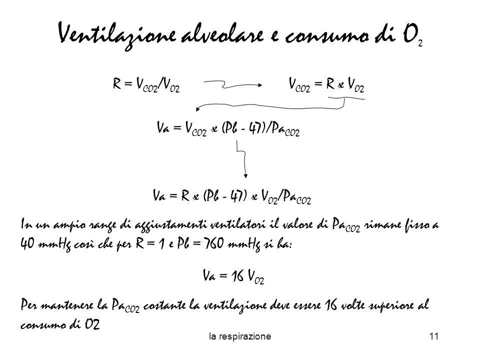 Ventilazione alveolare e consumo di O2