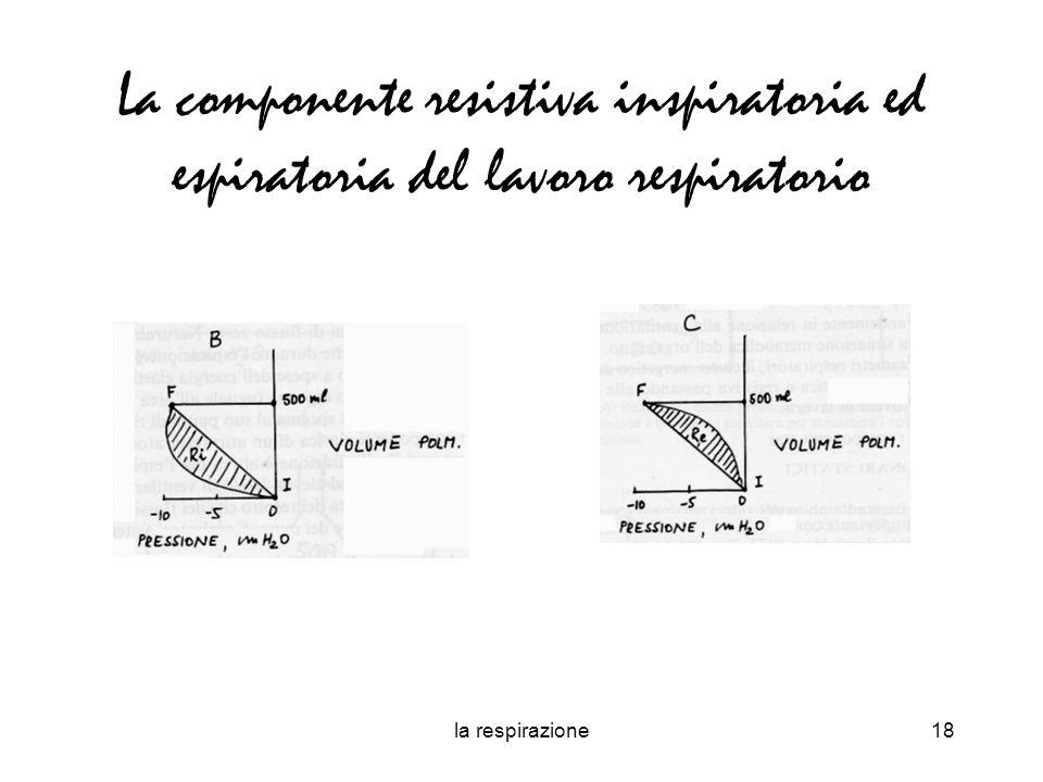 La componente resistiva inspiratoria ed espiratoria del lavoro respiratorio
