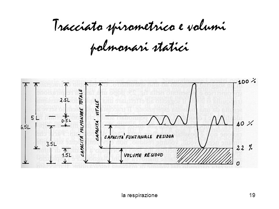 Tracciato spirometrico e volumi polmonari statici