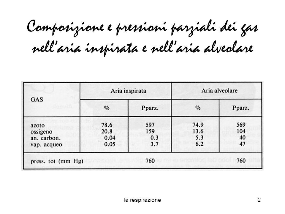 Composizione e pressioni parziali dei gas nell'aria inspirata e nell'aria alveolare