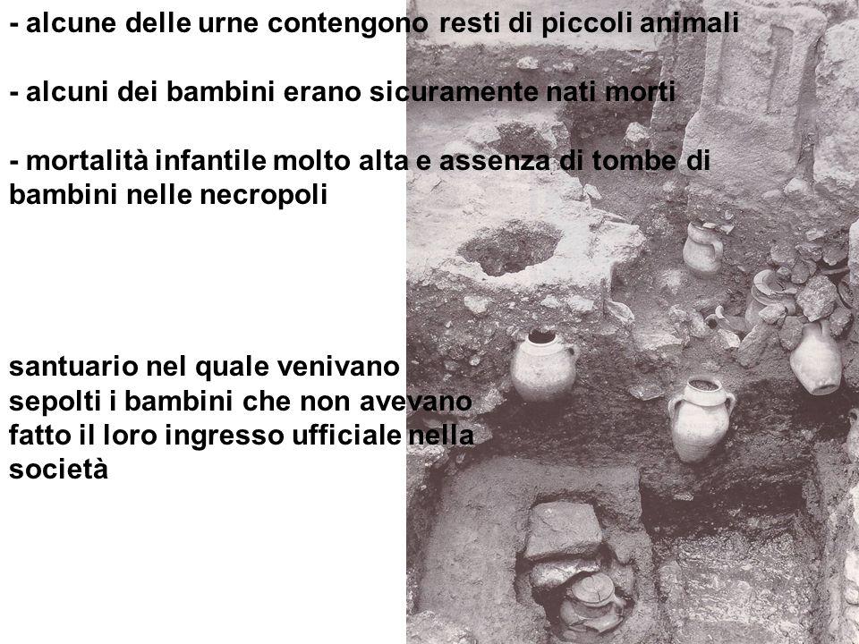 - alcune delle urne contengono resti di piccoli animali