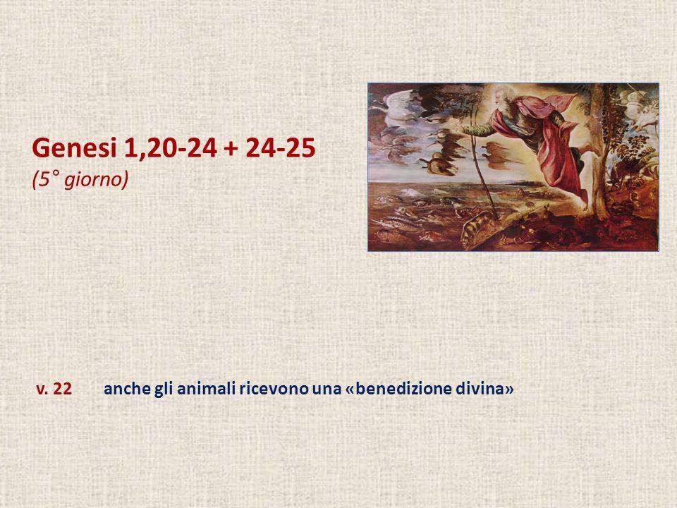 Genesi 1,20-24 + 24-25 (5° giorno) v. 22 anche gli animali ricevono una «benedizione divina»