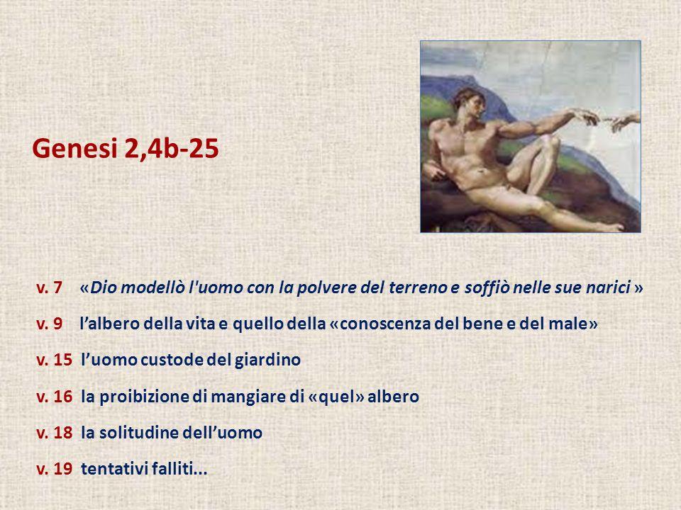 Genesi 2,4b-25v. 7 «Dio modellò l uomo con la polvere del terreno e soffiò nelle sue narici »