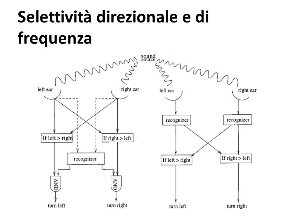 Selettività direzionale e di frequenza