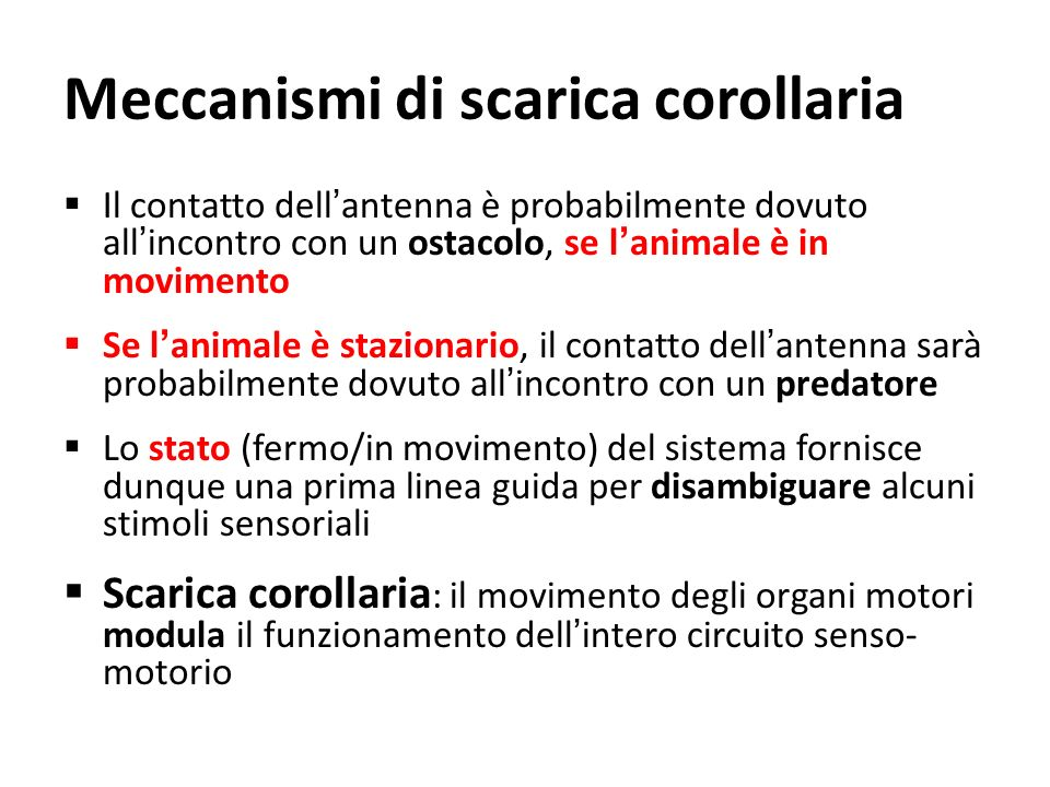 Meccanismi di scarica corollaria