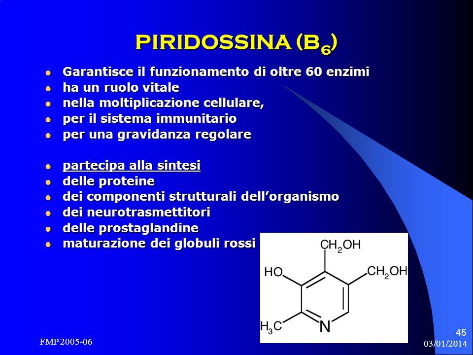 PIRIDOSSINA (B6) Garantisce il funzionamento di oltre 60 enzimi