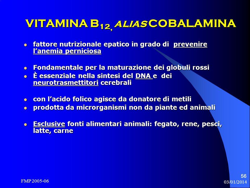 VITAMINA B12, alias COBALAMINA