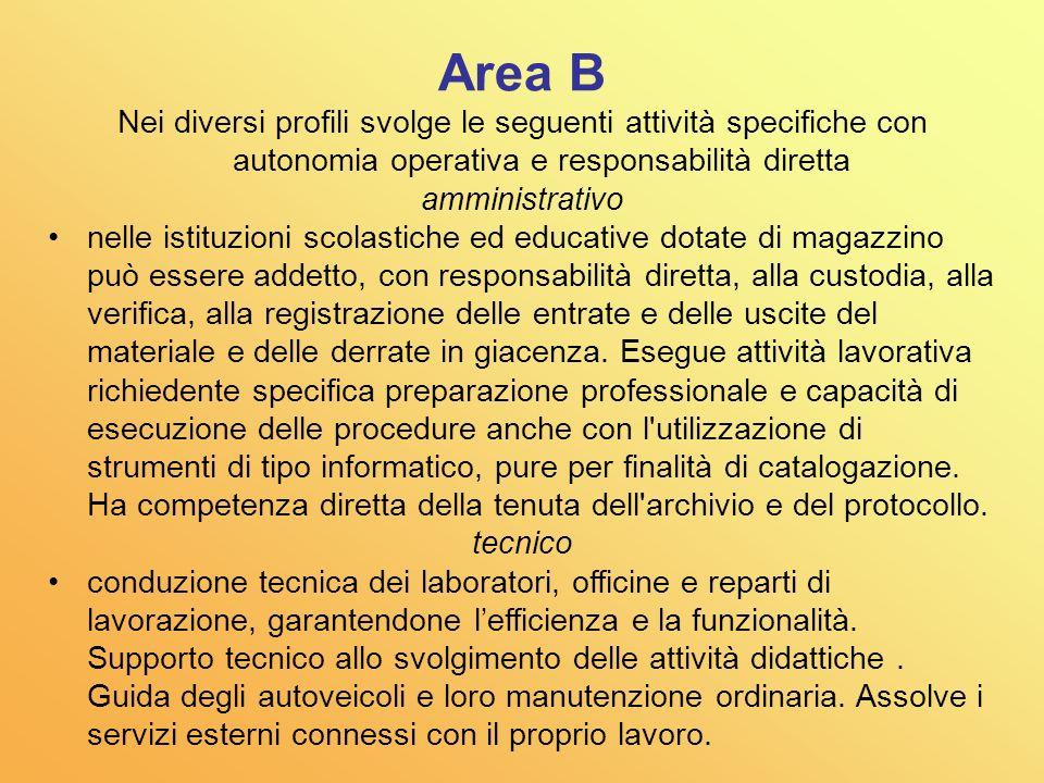 Area B Nei diversi profili svolge le seguenti attività specifiche con autonomia operativa e responsabilità diretta.