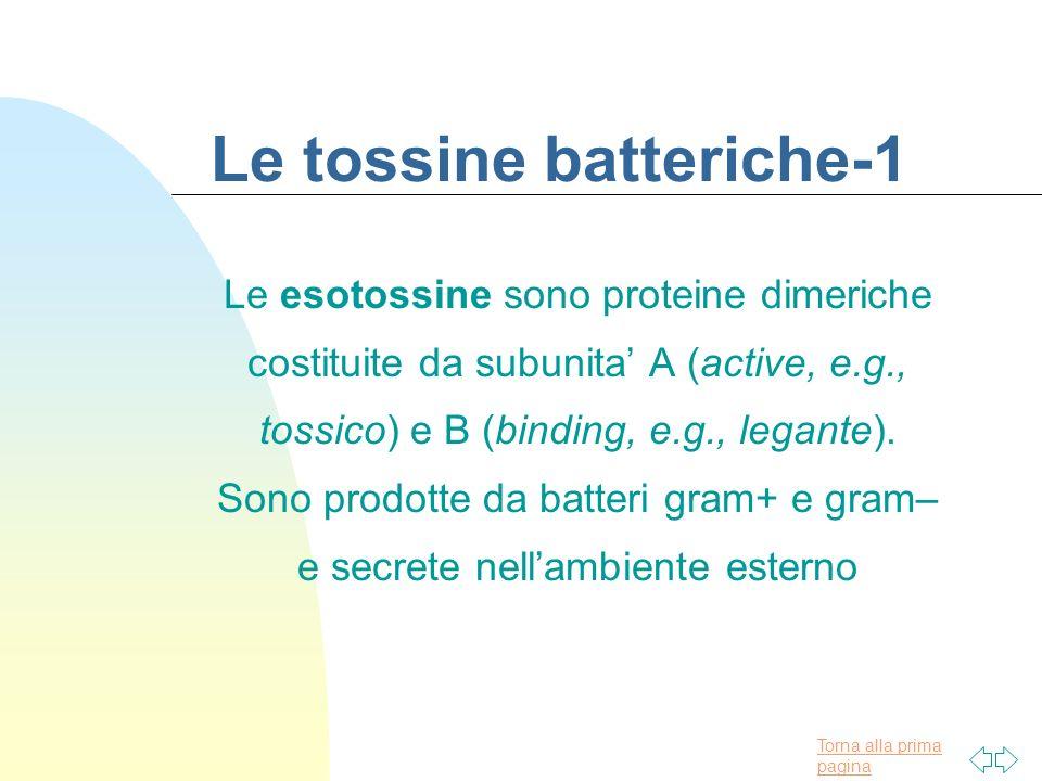Le tossine batteriche-1