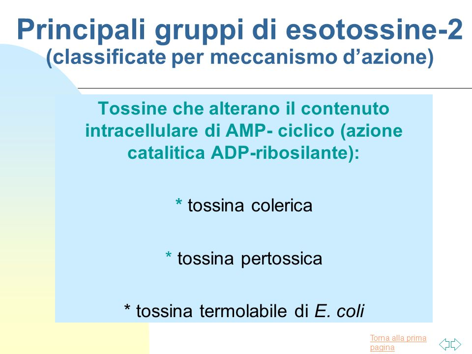 * tossina termolabile di E. coli
