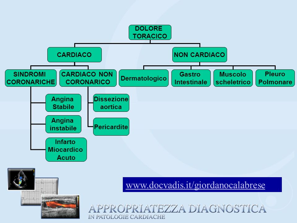 www.docvadis.it/giordanocalabrese DOLORE TORACICO CARDIACO