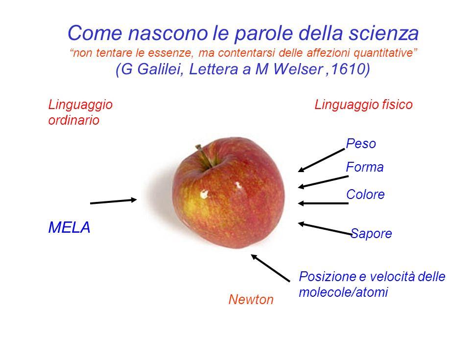 Come nascono le parole della scienza non tentare le essenze, ma contentarsi delle affezioni quantitative (G Galilei, Lettera a M Welser ,1610)