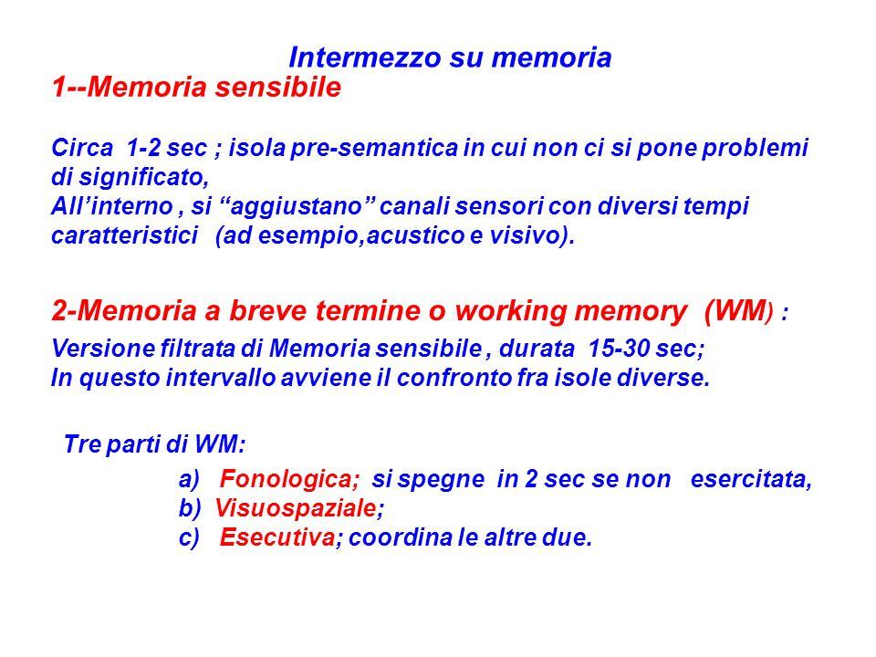2-Memoria a breve termine o working memory (WM) :