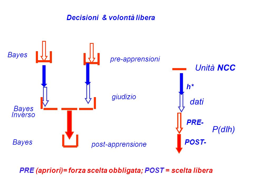 Unità NCC dati P(dIh) Decisioni & volontà libera Bayes pre-apprensioni