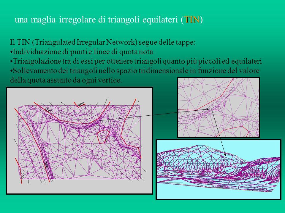 una maglia irregolare di triangoli equilateri (TIN)