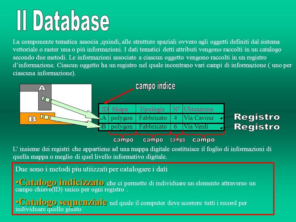 Il Database campo indice A Registro B Registro campo campo campo campo