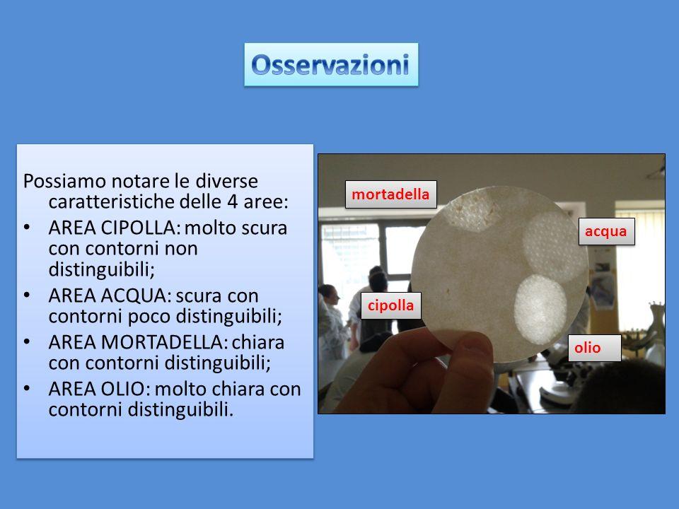 Osservazioni Possiamo notare le diverse caratteristiche delle 4 aree: