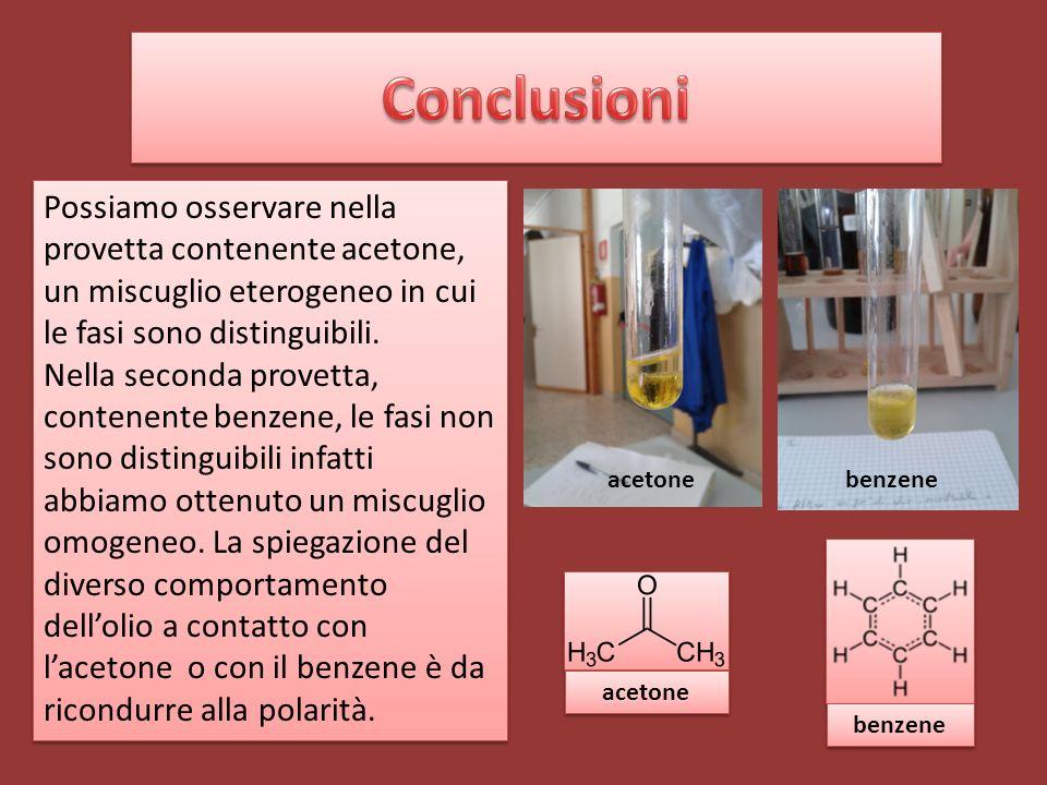 Conclusioni Possiamo osservare nella provetta contenente acetone, un miscuglio eterogeneo in cui le fasi sono distinguibili.