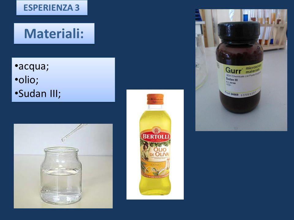 ESPERIENZA 3 Materiali: acqua; olio; Sudan III;